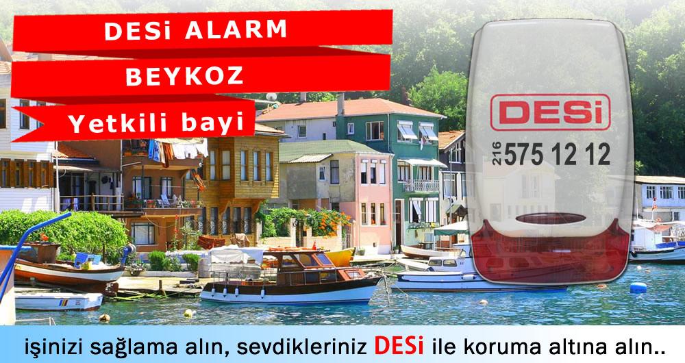 Beykoz Desi Alarm